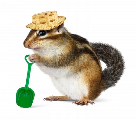 20334703-funny-chipmunk-with-straw-hat-and-shovel-farmer-concept